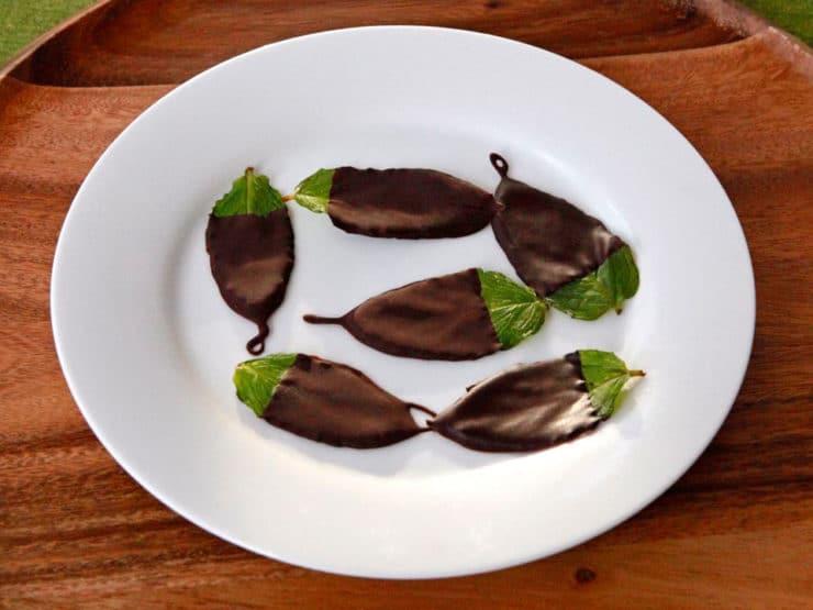 نعنا شکلات
